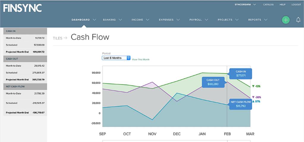 FINSYNC cash flow management