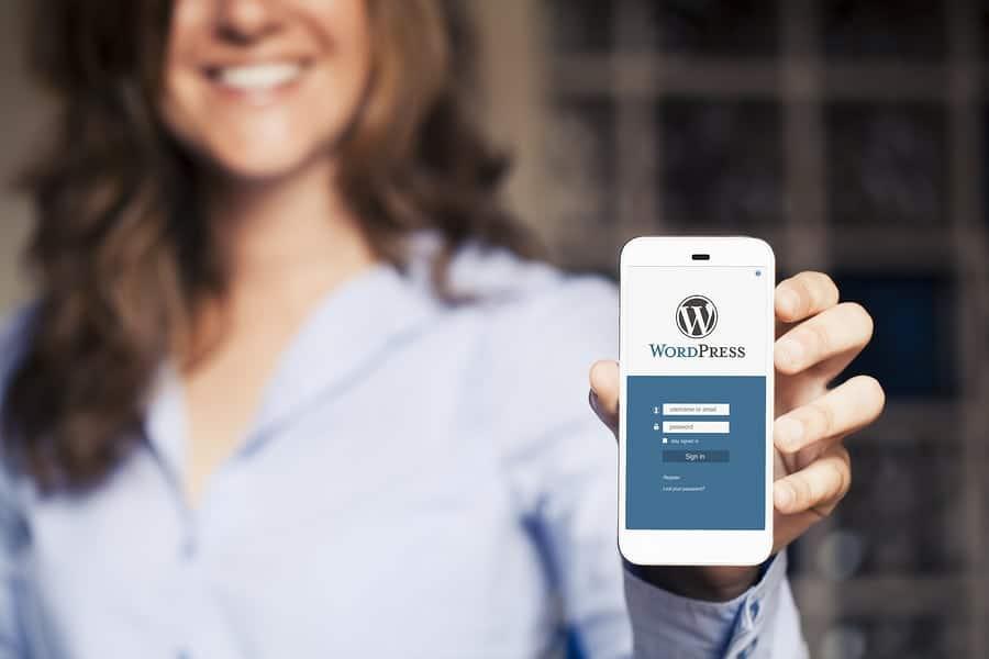 eae7c369565 Is WordPress Easy To Use For eCommerce? | Merchant Maverick