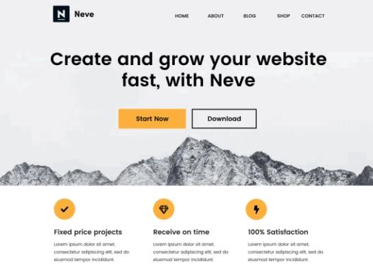 Screengrab of Neve theme for WordPress websites